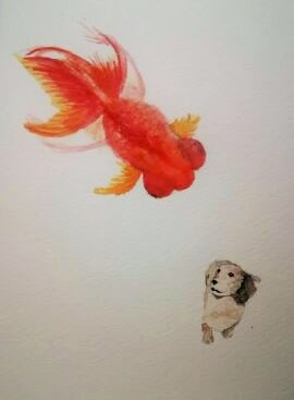 金魚の気持ち35