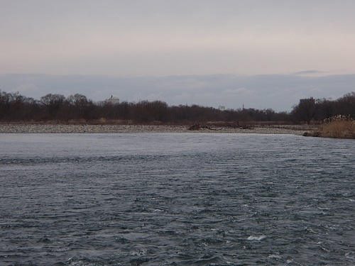 ⑳福松大橋下流左岸中洲を右岸よりその2