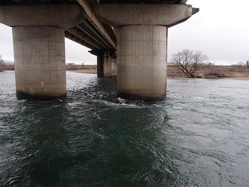 ①福井大橋下流右岸直下