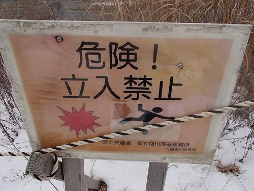 21福井大橋上流左岸その4