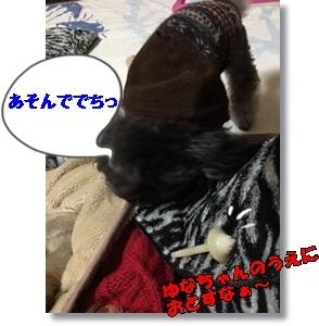 image1127.jpg