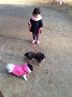 IMG_4206お正月の散歩2