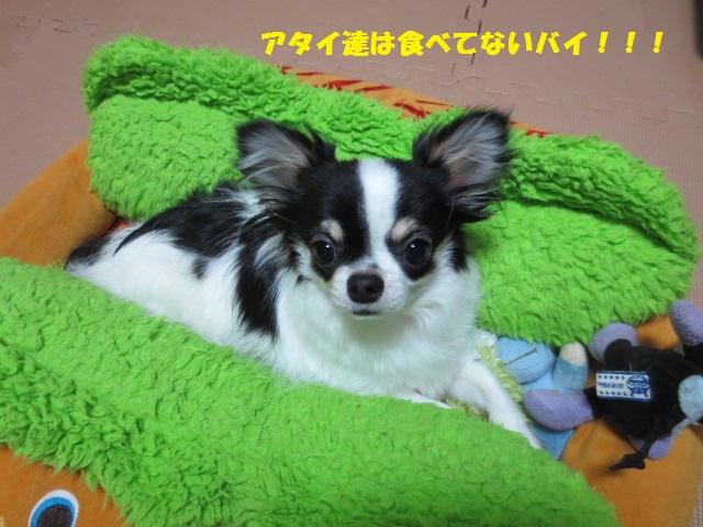 IMG_2395恵方巻1