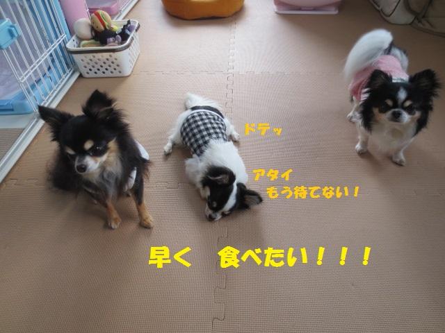 IMG_2411ケークサレ3 - コピー