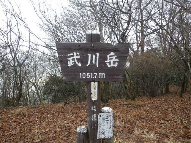 IMGP8406_R.jpg