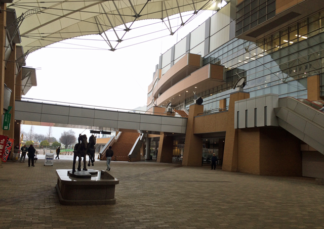 新潟競馬場2016010501