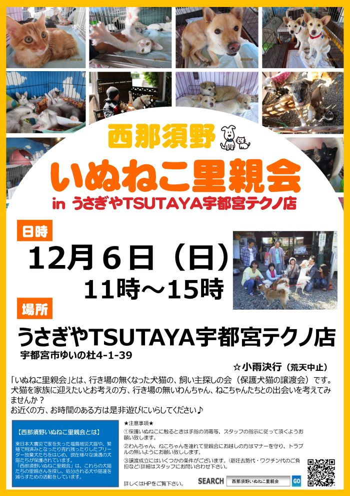 satooya1206_post髢句ぎ蜻顔衍 1