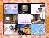sakura_main.png