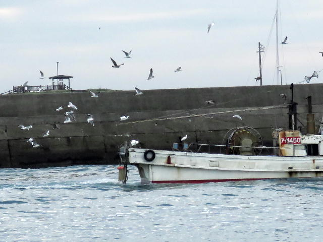 漁港01 (6)