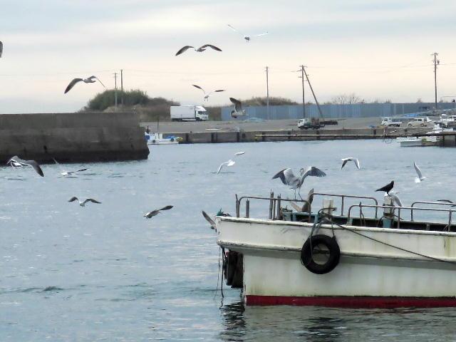 漁港01 (8)