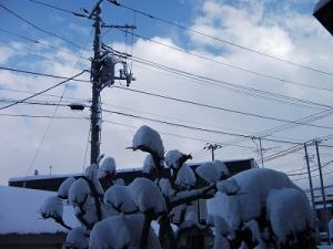 160111雪の晴れ間