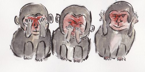 猿3_0002トリミングリサイズ