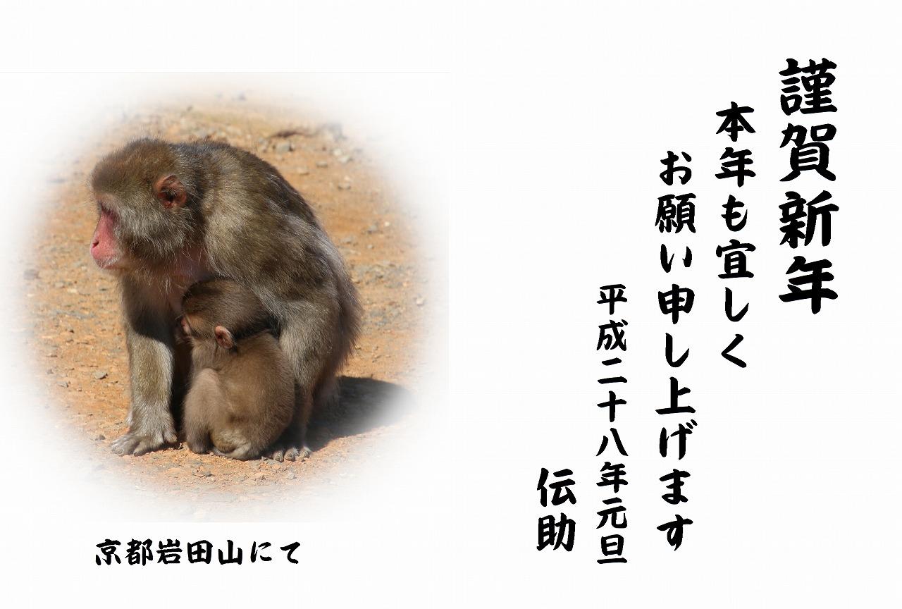 平成28年ブログ猿4