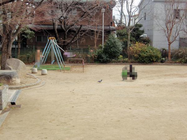 箕輪豊公園 (7)