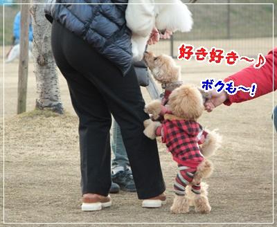 IMG_0707 (2)