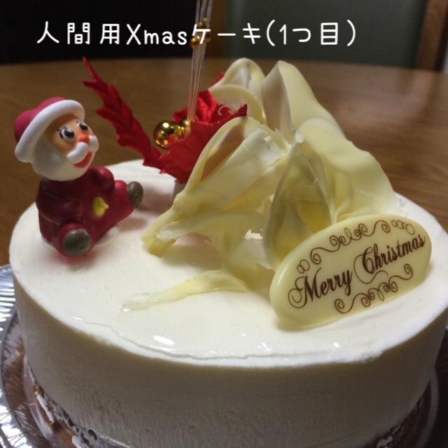 ココモコ Merry Christmas 2015 3