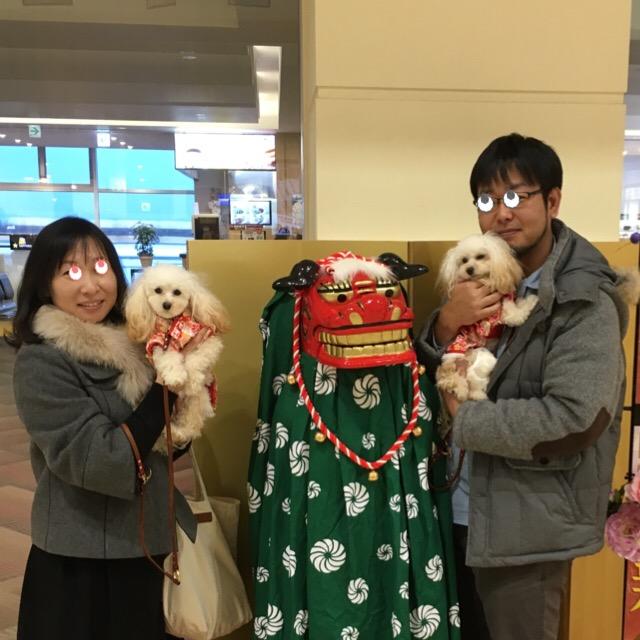 2016.1.1 みぃちゃんとココモコ おまけ