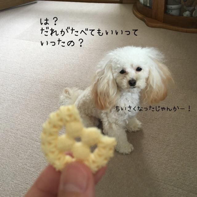 2016.1.4 ココモコのオヤツ3