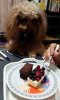 事務所でケーキを2