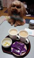 騒々茶の時間1