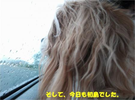 02_convert_20151126193613.jpg