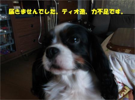 02_convert_20151127183028.jpg