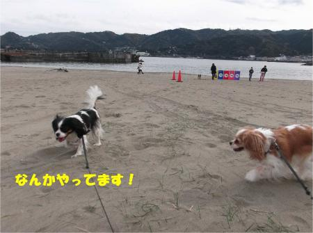 04_convert_20151208184301.jpg