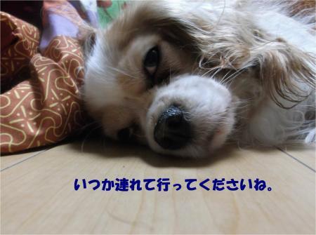05_convert_20151126193647.jpg