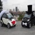 白と黒の車