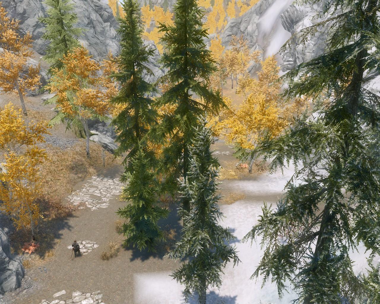12黄金の森
