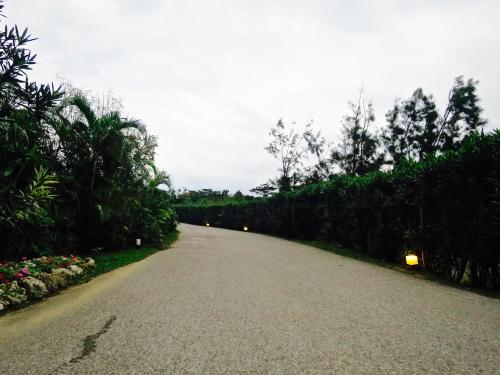 ホテル敷地の道