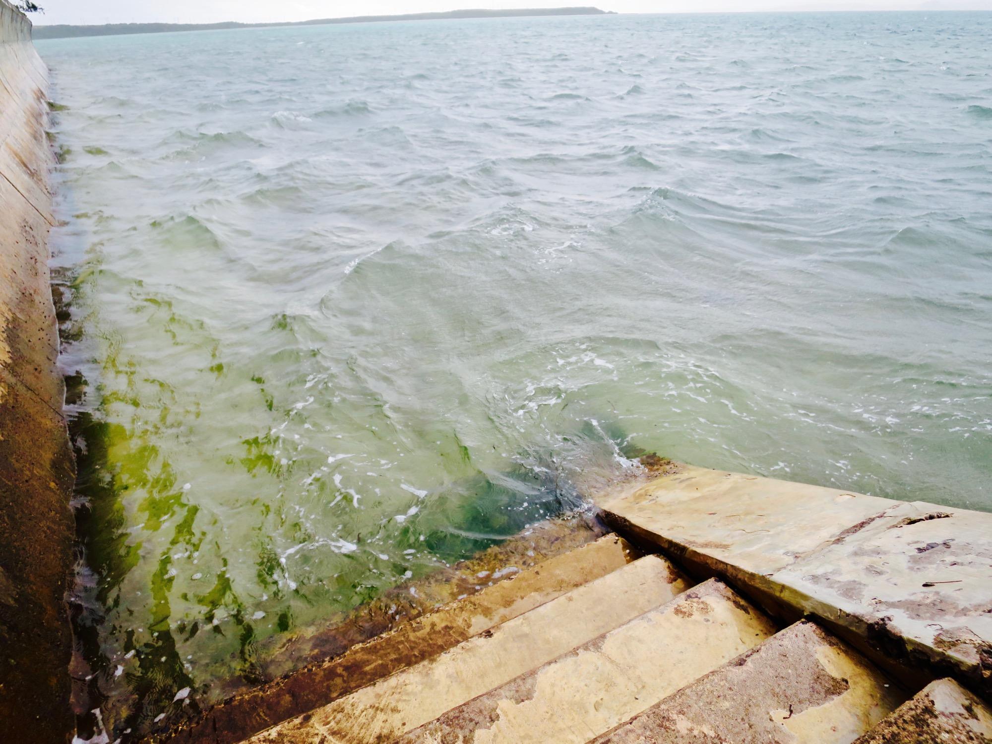 謎の海水浴場