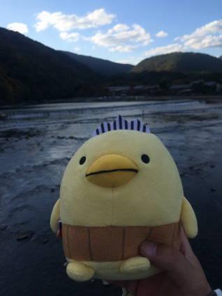 嵐山028