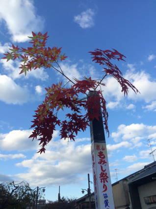 嵐山035