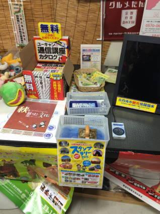 KUMIHAMA005.jpg