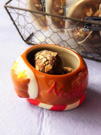 ココアクランブルクッキー【モニター】