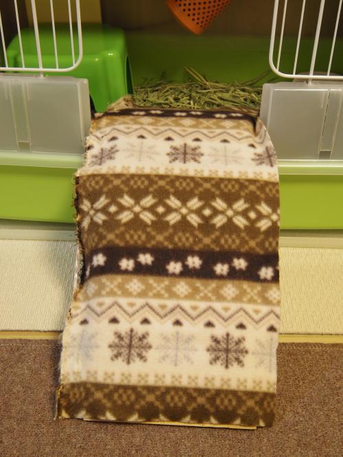今年の毛布2