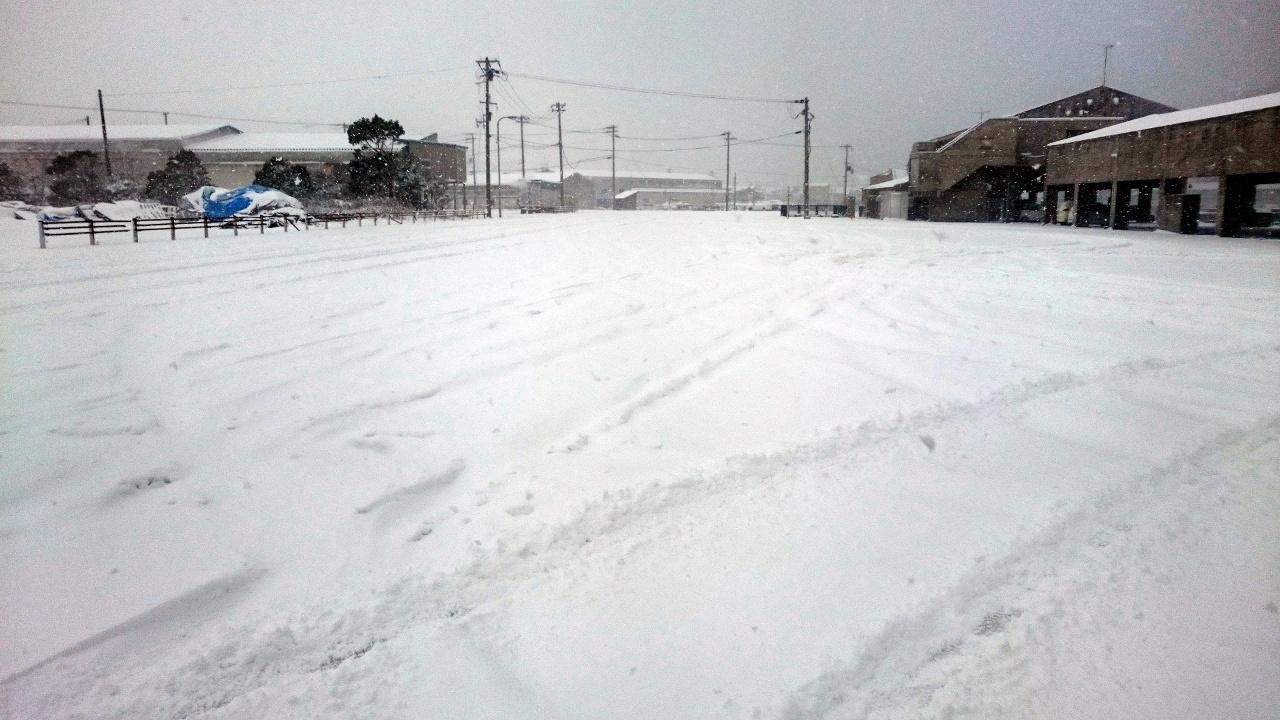 20160124-Snow-X01.jpg