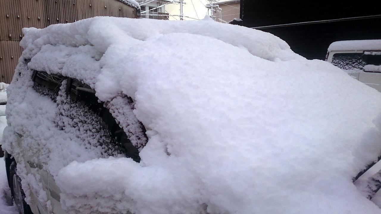 20160216-Snow-X01.jpg