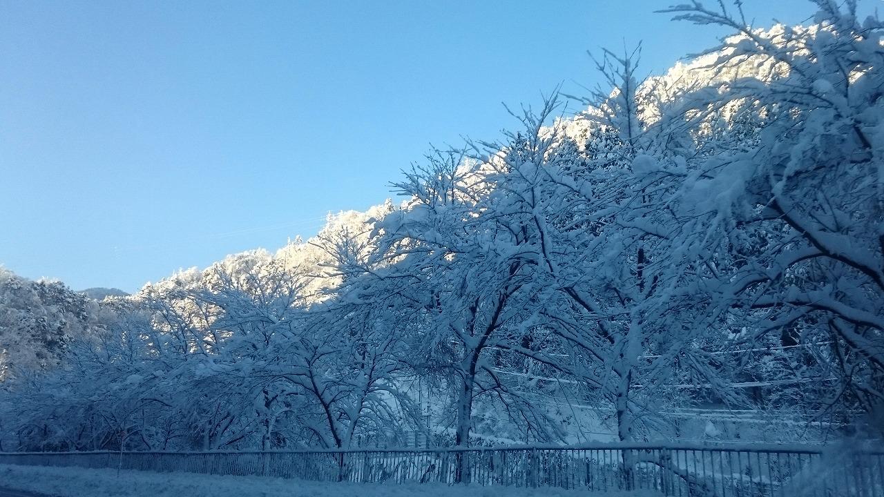 20160216-Snow-X06.jpg