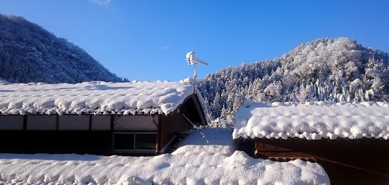20160216-Snow-X07.jpg