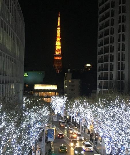 遠くに東京タワーがみえます
