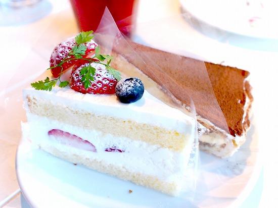 04@TART&CAKE BUFFET@MACARONI MARKET(マカロニ市場) 松戸店 2016年01月