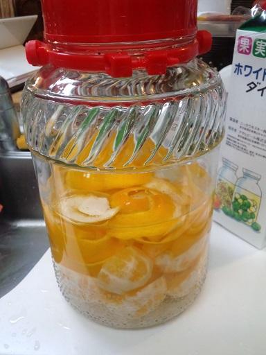 20160131_レモン酒5