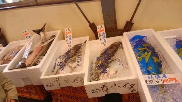 2015冬 新潟温泉スタンド 25