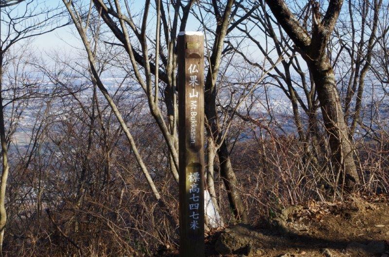 仏果山・高取山(東丹沢)を日帰り登山 宮ケ瀬湖・神奈川の街並みを展望 (2016年1月) : ワッキーの登山ブログ