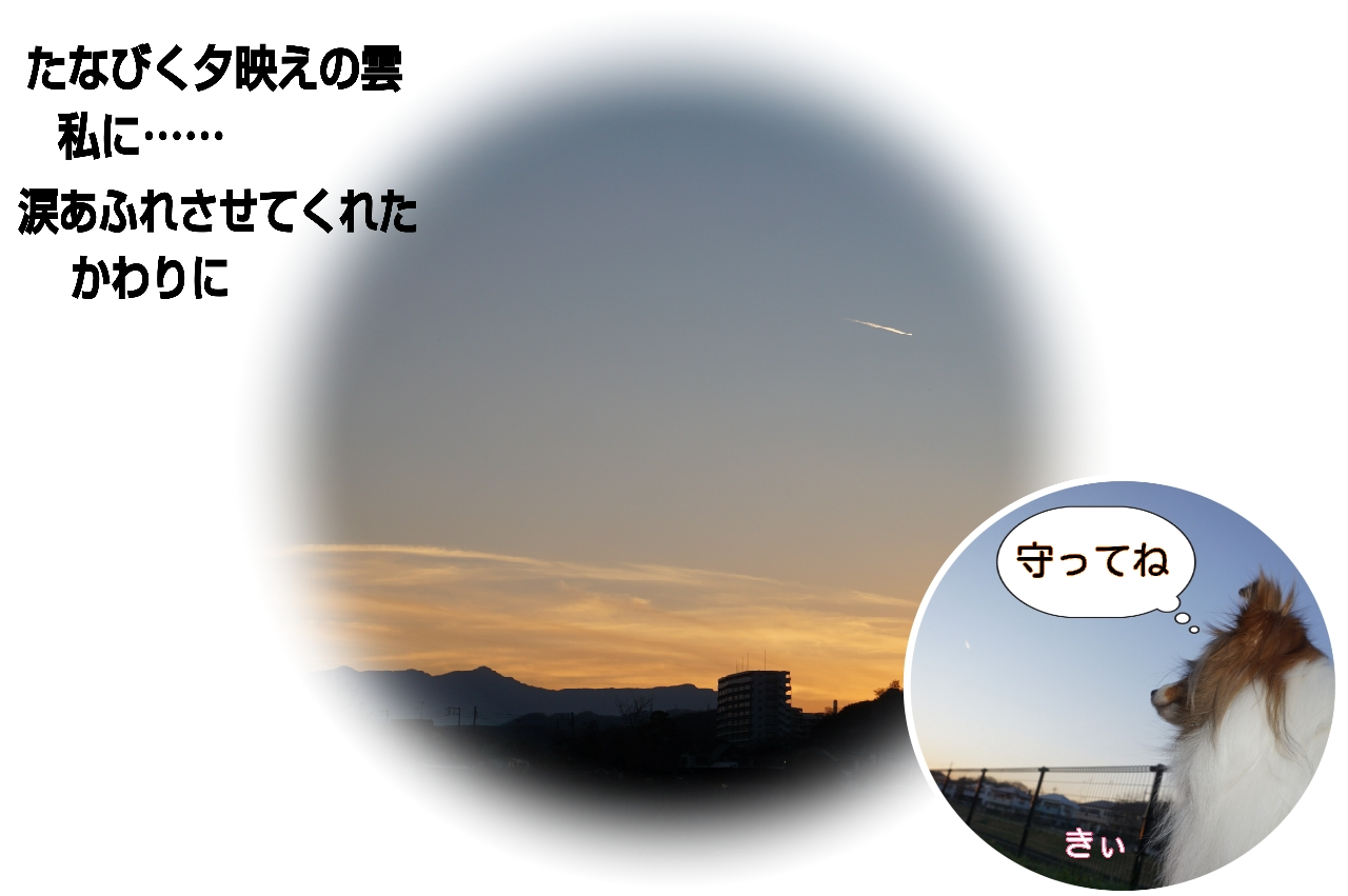 16-01-07-01-30-26-536_deco.jpg