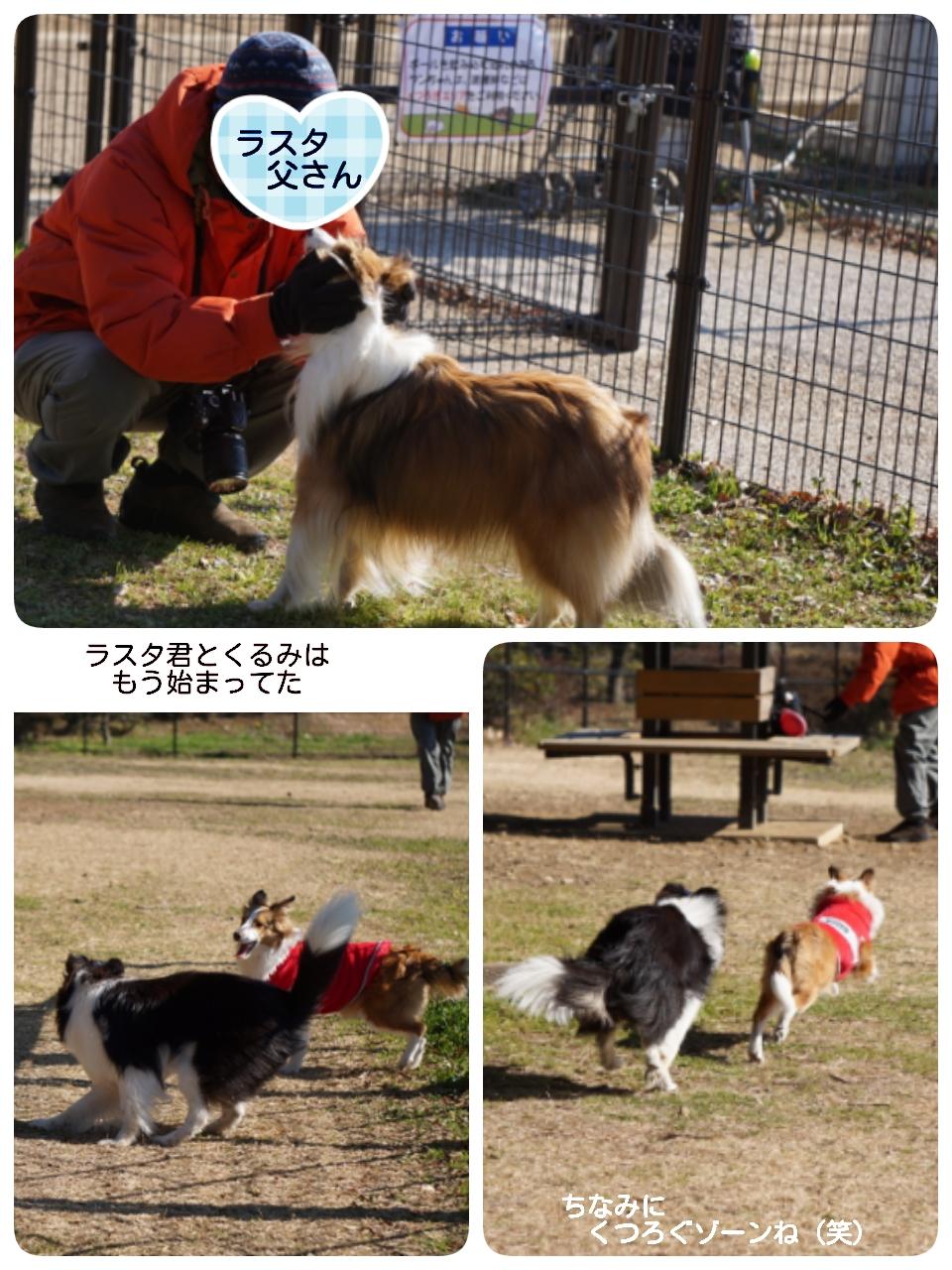 16-01-16-16-09-53-668_deco.jpg