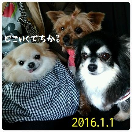 20160101_140721.jpg