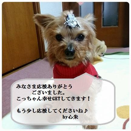 20160111_162558.jpg